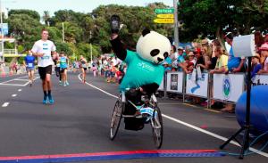 Panda 2016 RtB